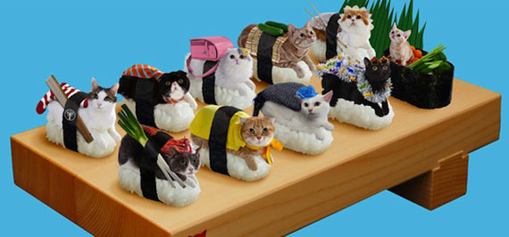 Because sushi + cats = happiness.