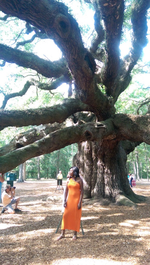 But the Angel Oak is always polite.