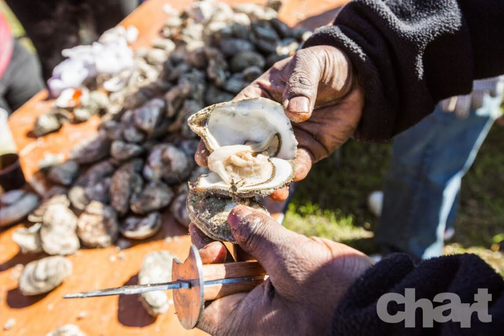 But mostly oysters. It is the oyster festival, after all.